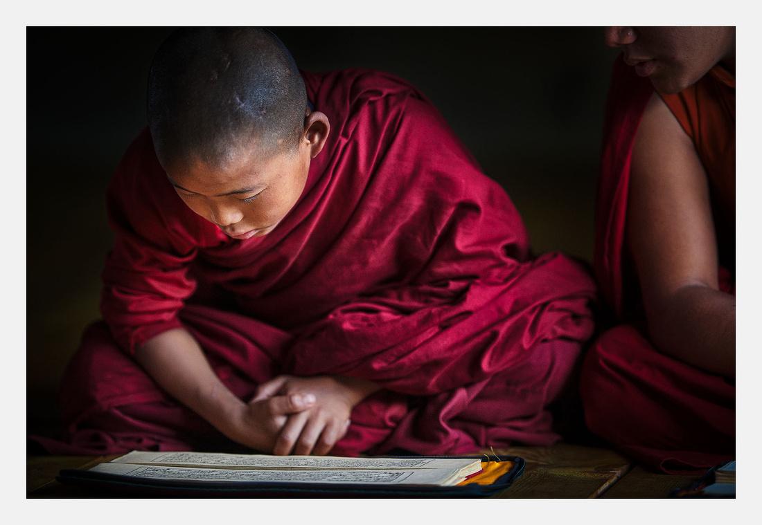 Monk Reading - Bhutan