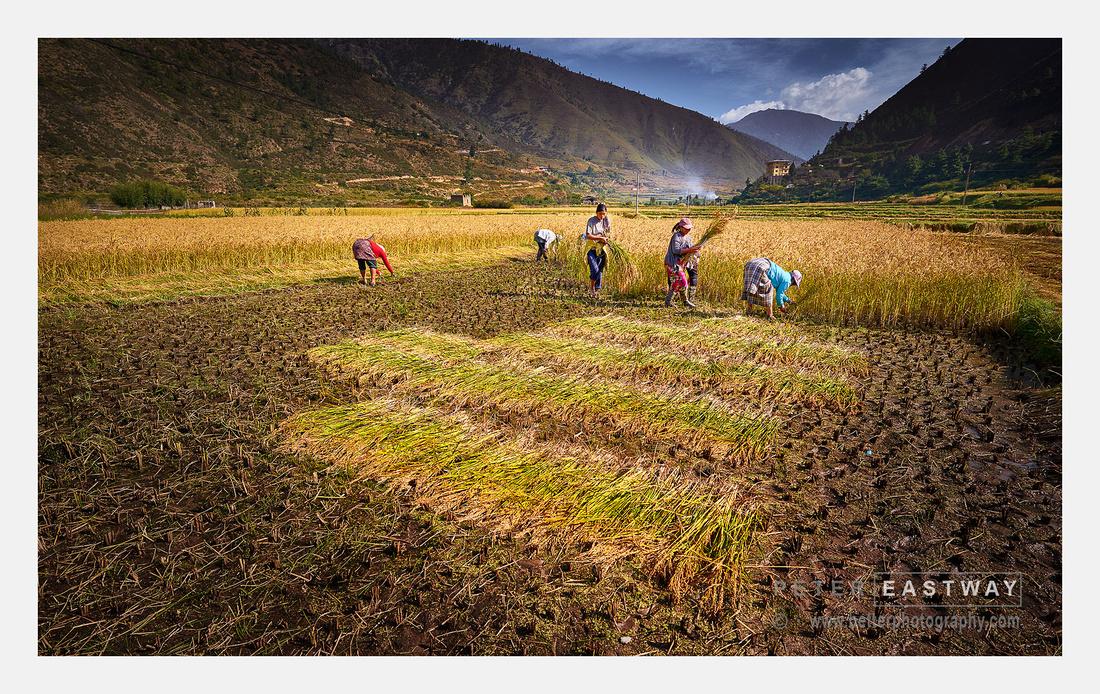Chelela - Bhutan